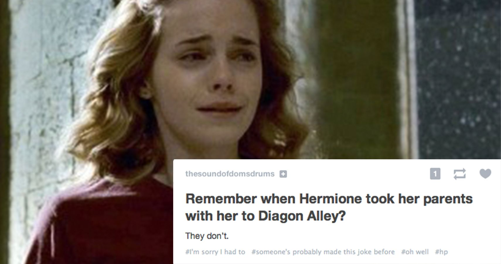 15 Greatest Tumblr Posts You'll Appreciate If You're A Potterhead