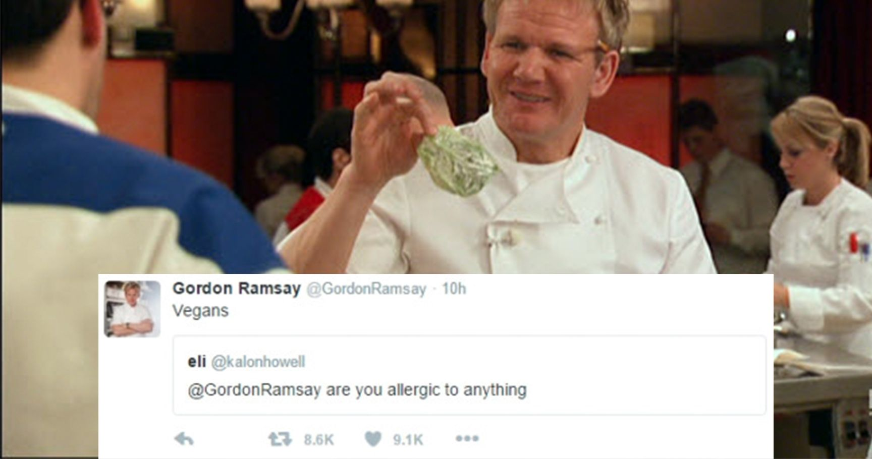 15 Savage Times Gordon Ramsay Roasted Hopeful Chefs | TheThings