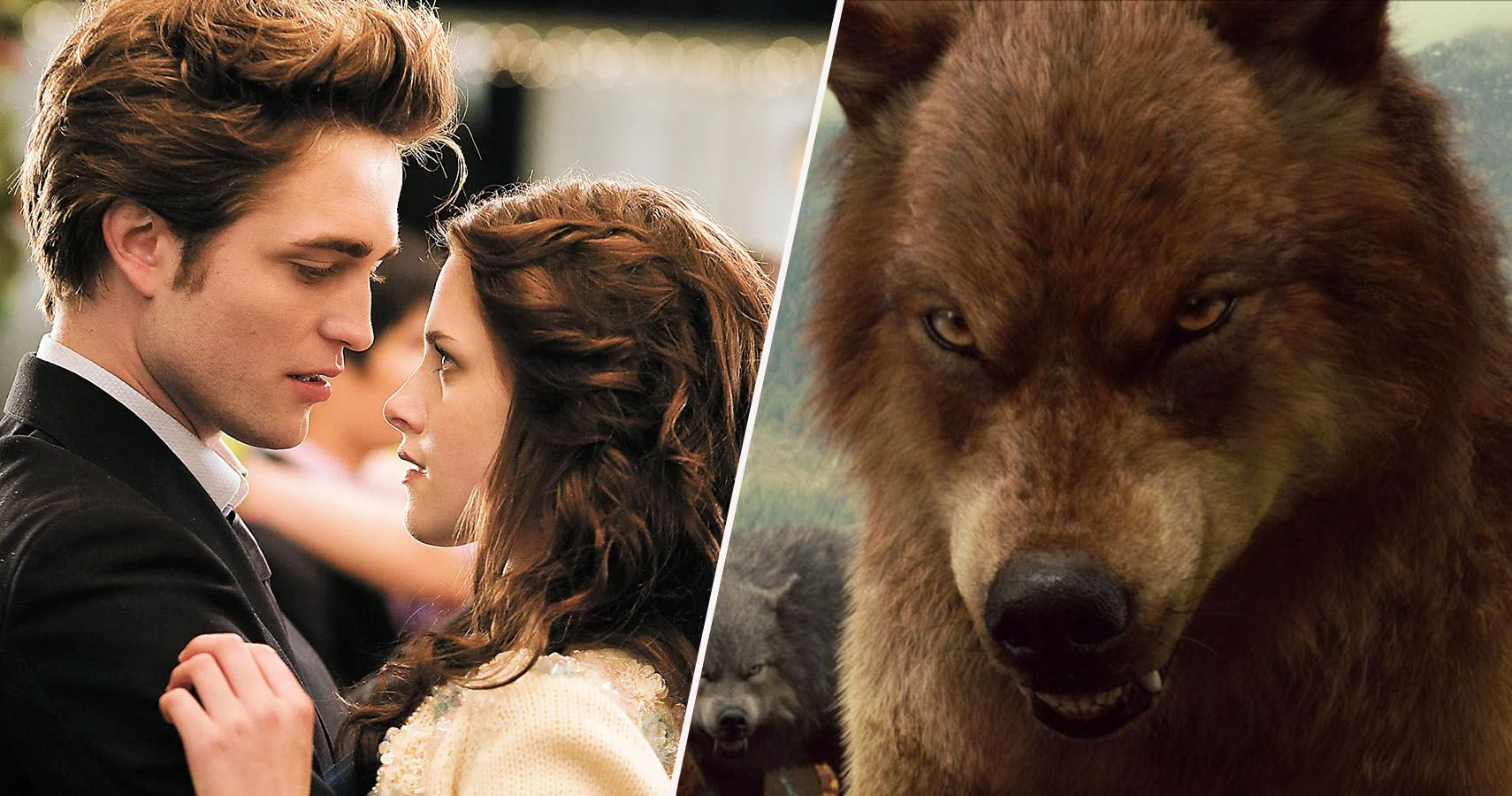 Twilight: 15 Things Most Fans Don't Know About The ...